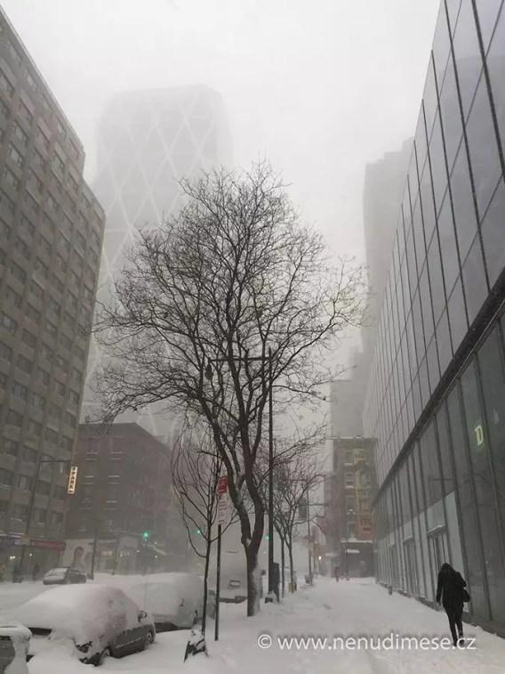 ny_winter_2016_foto_14
