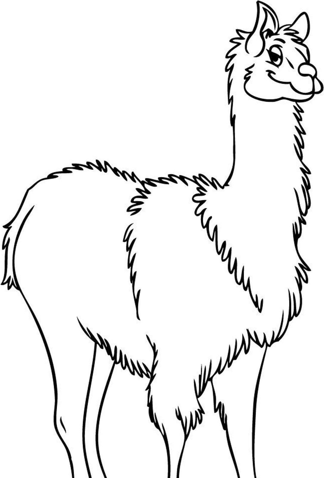 Llama Llama Worksheet