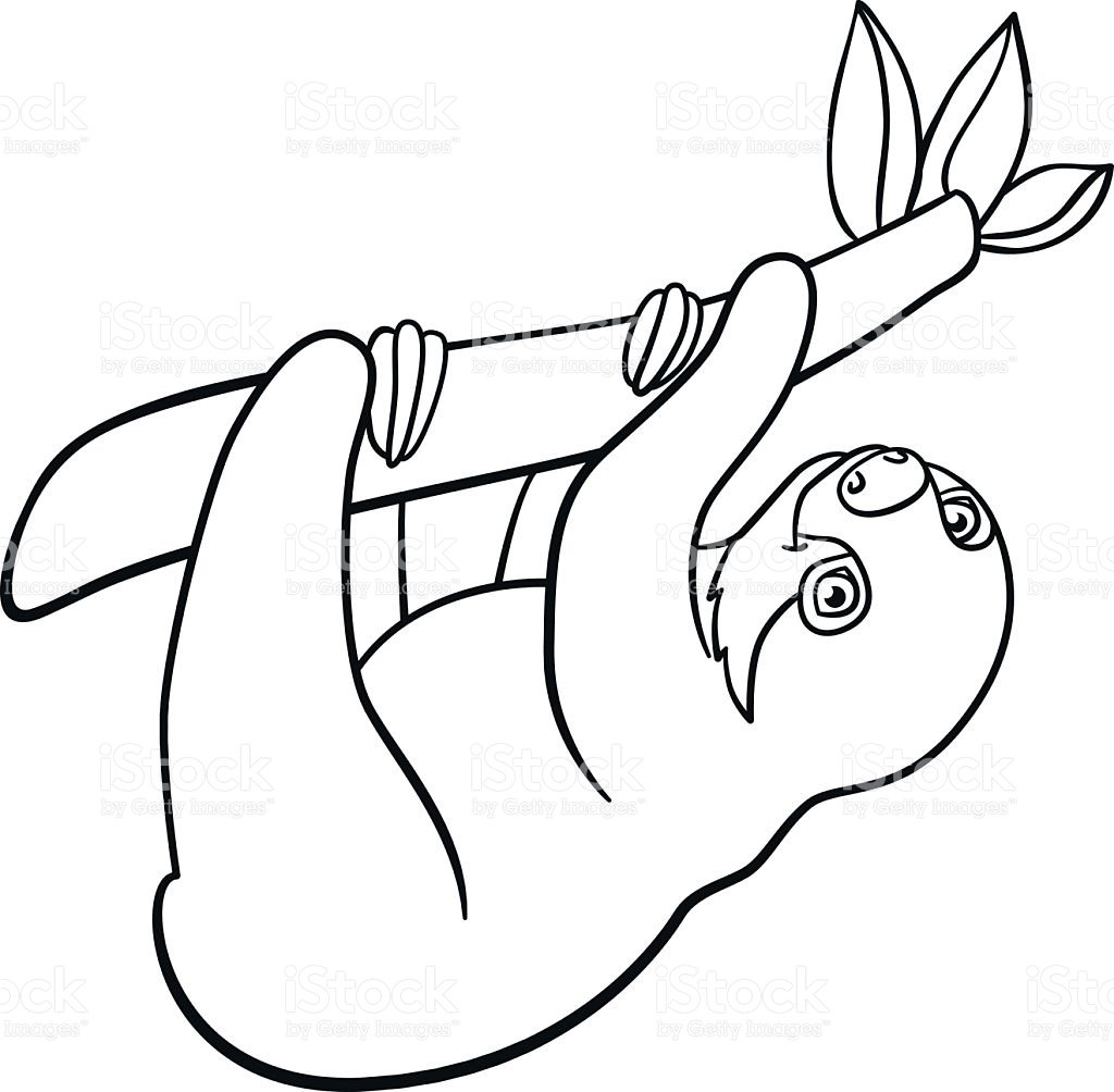 Sloth Coloring Pages
