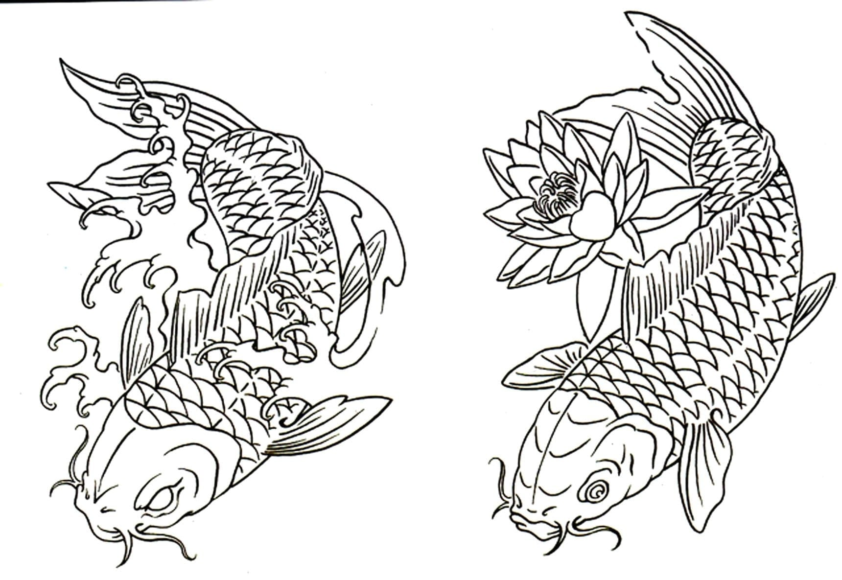 Fish Coloring Pages For Adults Coloring Pages Within Koi