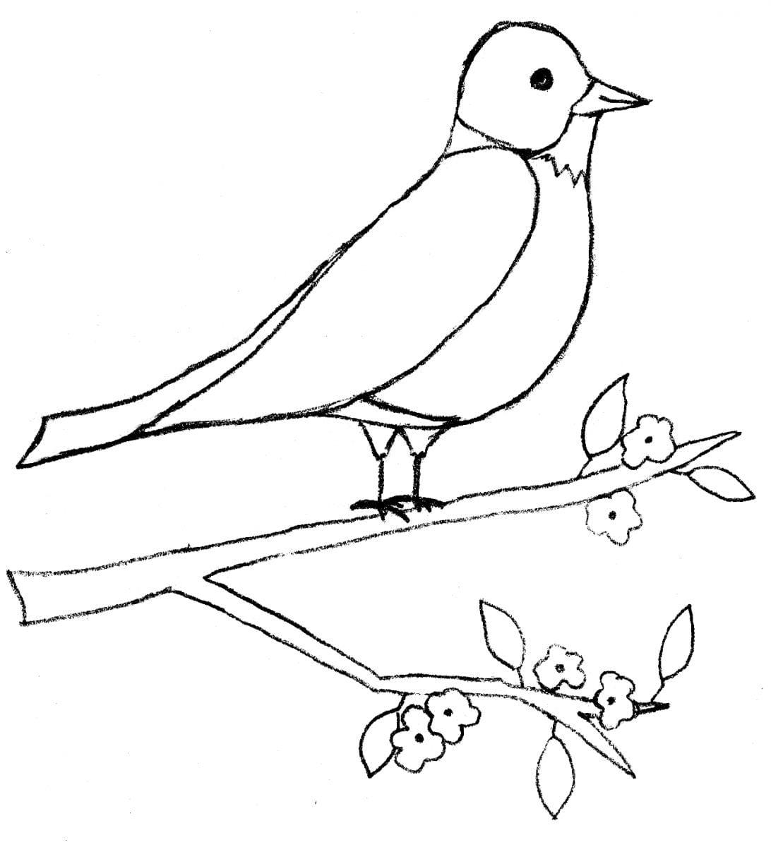 Robin Decoupaged Bird Feeder Neo Coloring