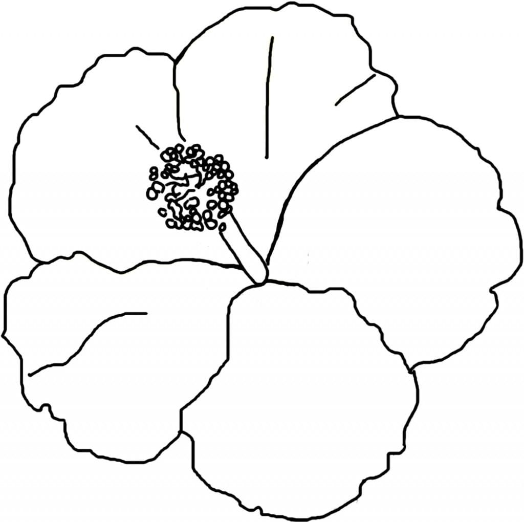 Free Printable Hibiscus Coloring Pages For Kids Neo Coloring