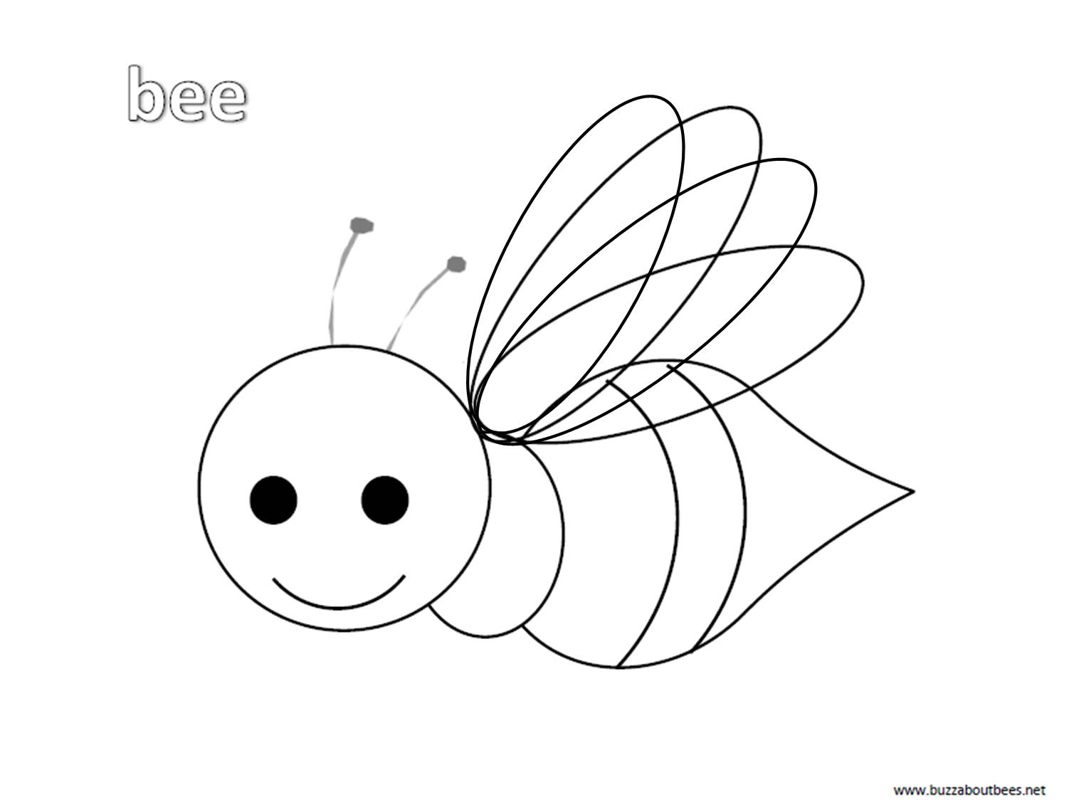 Honey Bee Pictures To Color