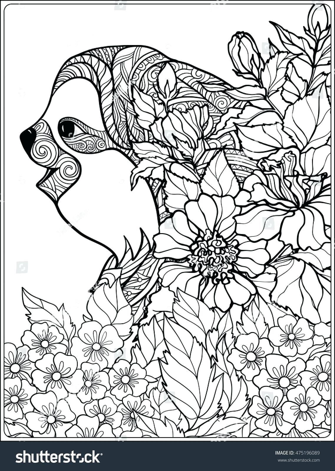 Rainforest Leaves Coloring Pages