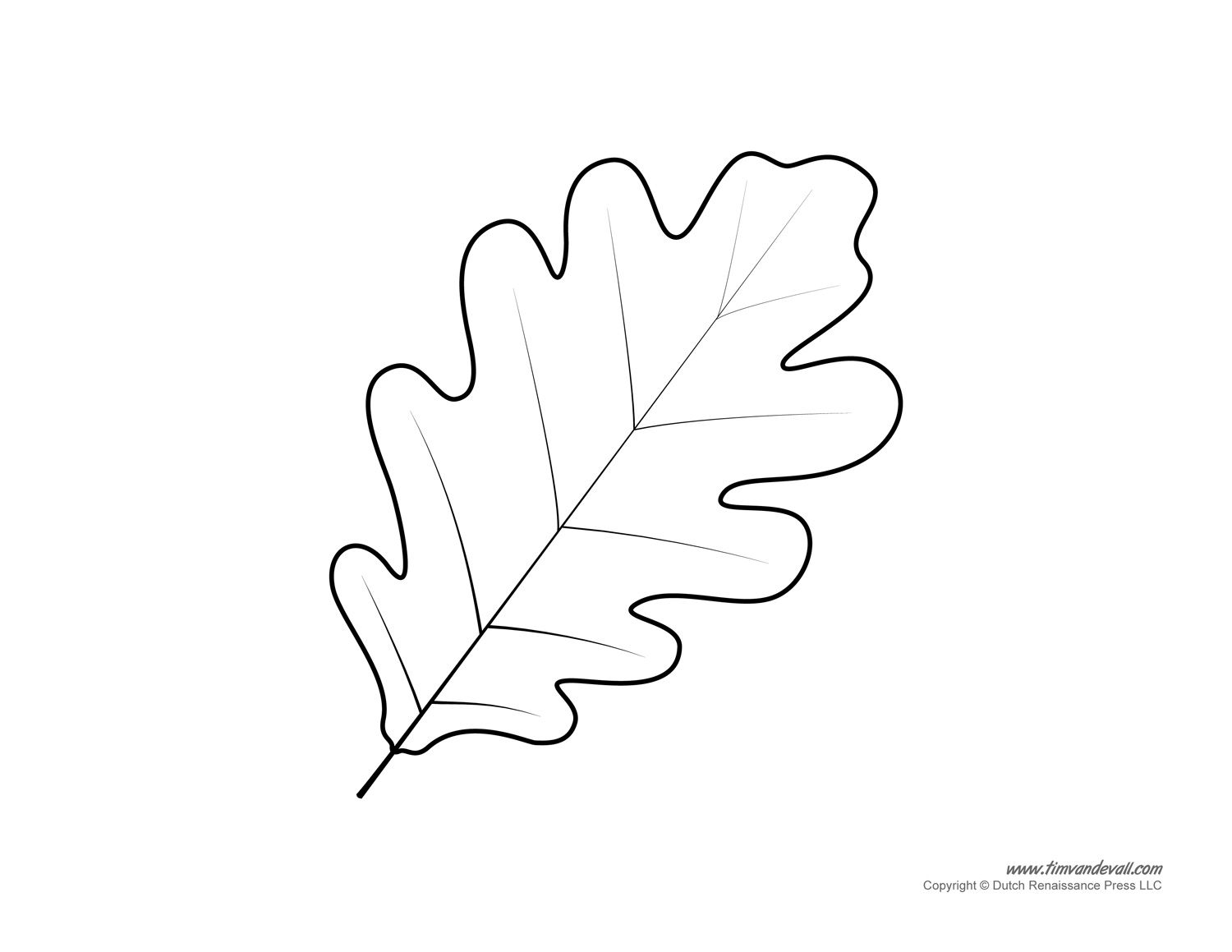 Oak Leaf Pattern A High Resolution Version Of The Leaf Drawing Neo Coloring