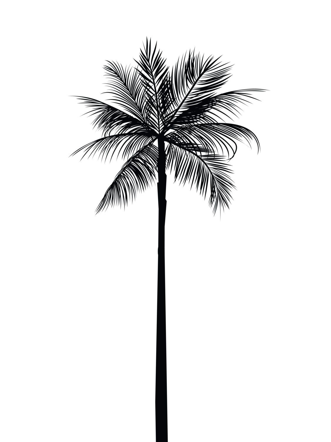 Palm Tree Worksheets