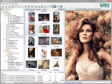 bulk image downloader crack 5.9