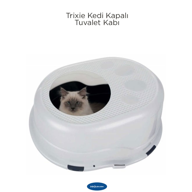 En İyiKedi Tuvaleti Modelleri