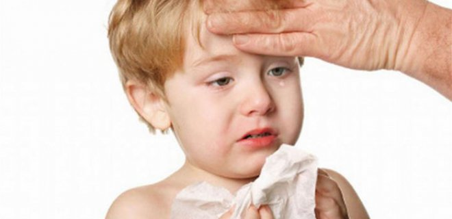 What Is A Food Allergy