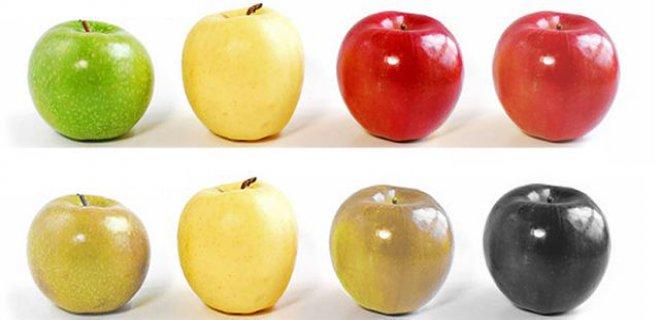 daltonizm hakkinda bilinmeyenler 001 - Color Blindness About Unknowns