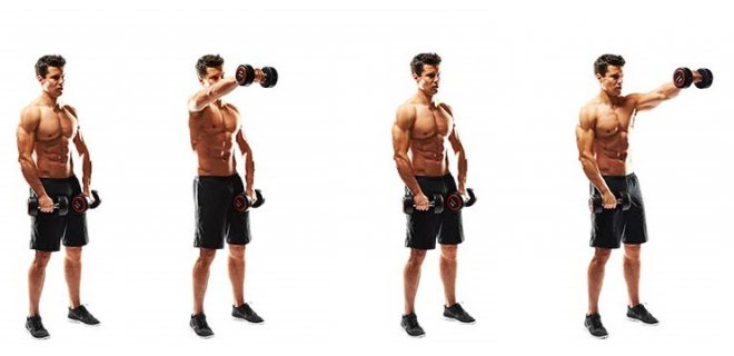dambil front - Best Shoulder Muscle Exercises