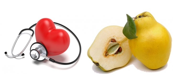 QUINCE'S CONTRIBUTIONS TO THE HEALTH OF THE BODY
