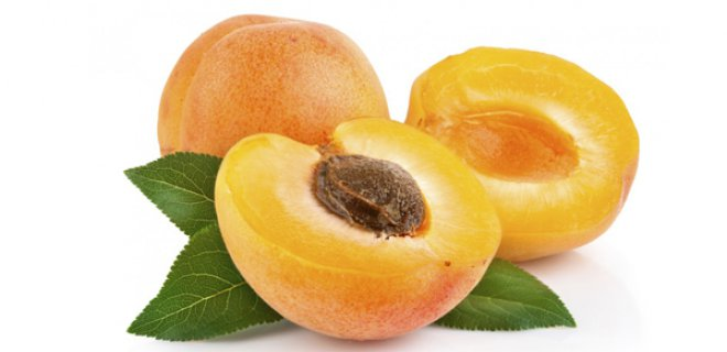 WHAT IS APRICOT OIL