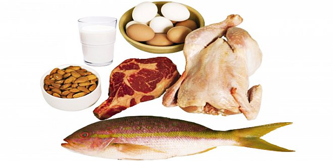 protein-002.jpg