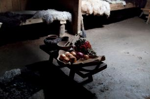 Inside Iron Age Farm