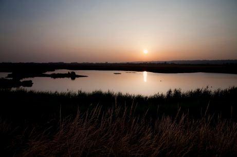 Farlington Marshes Sunset