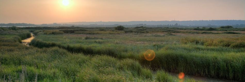 Farlington Marshes HDR