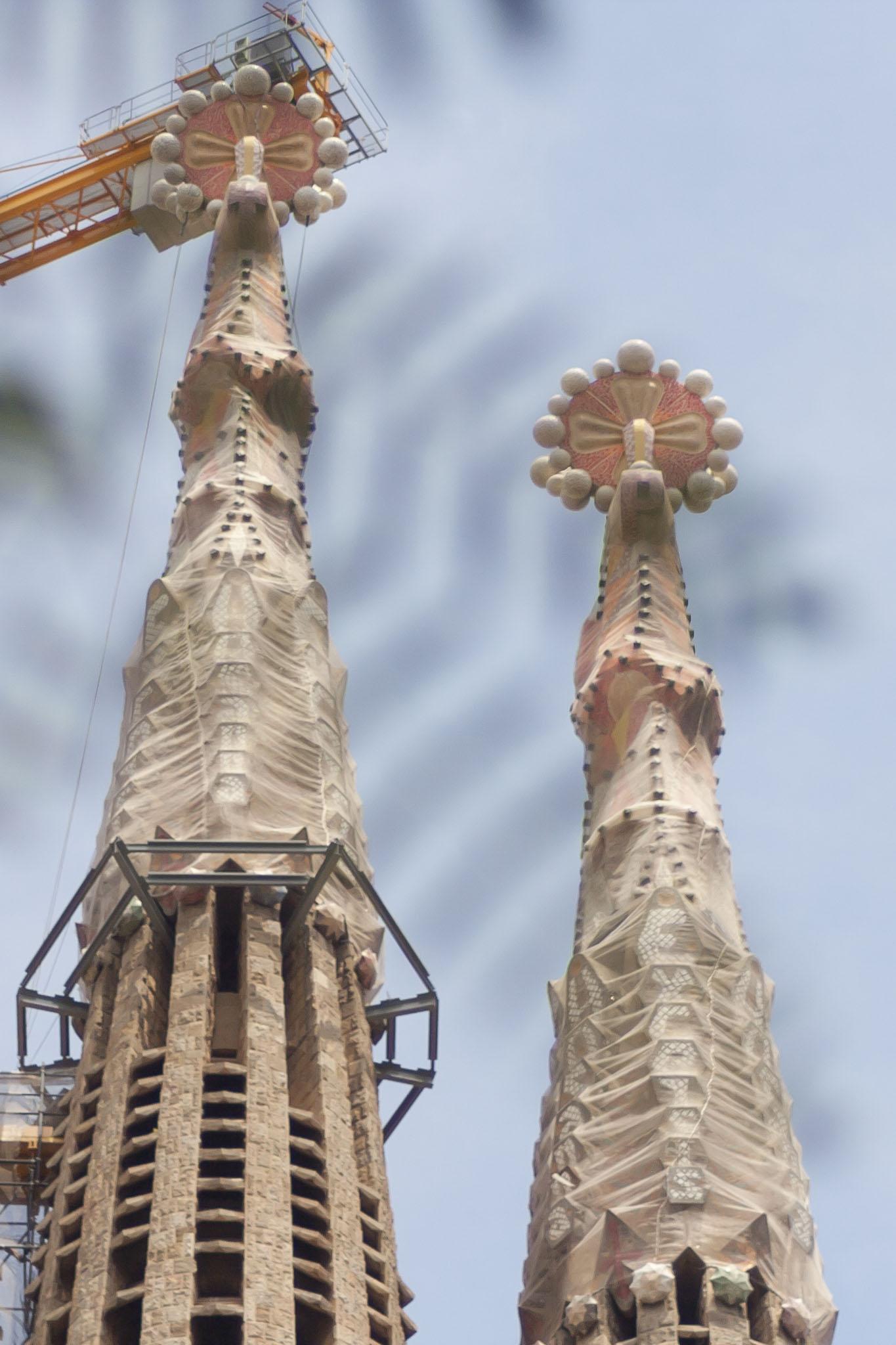 La Sagrada Familia Church Through Leaves