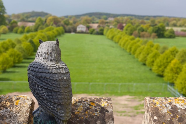 Owl, Coughton Court Roof