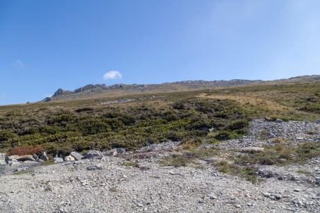 Mount Harriet, Falklands