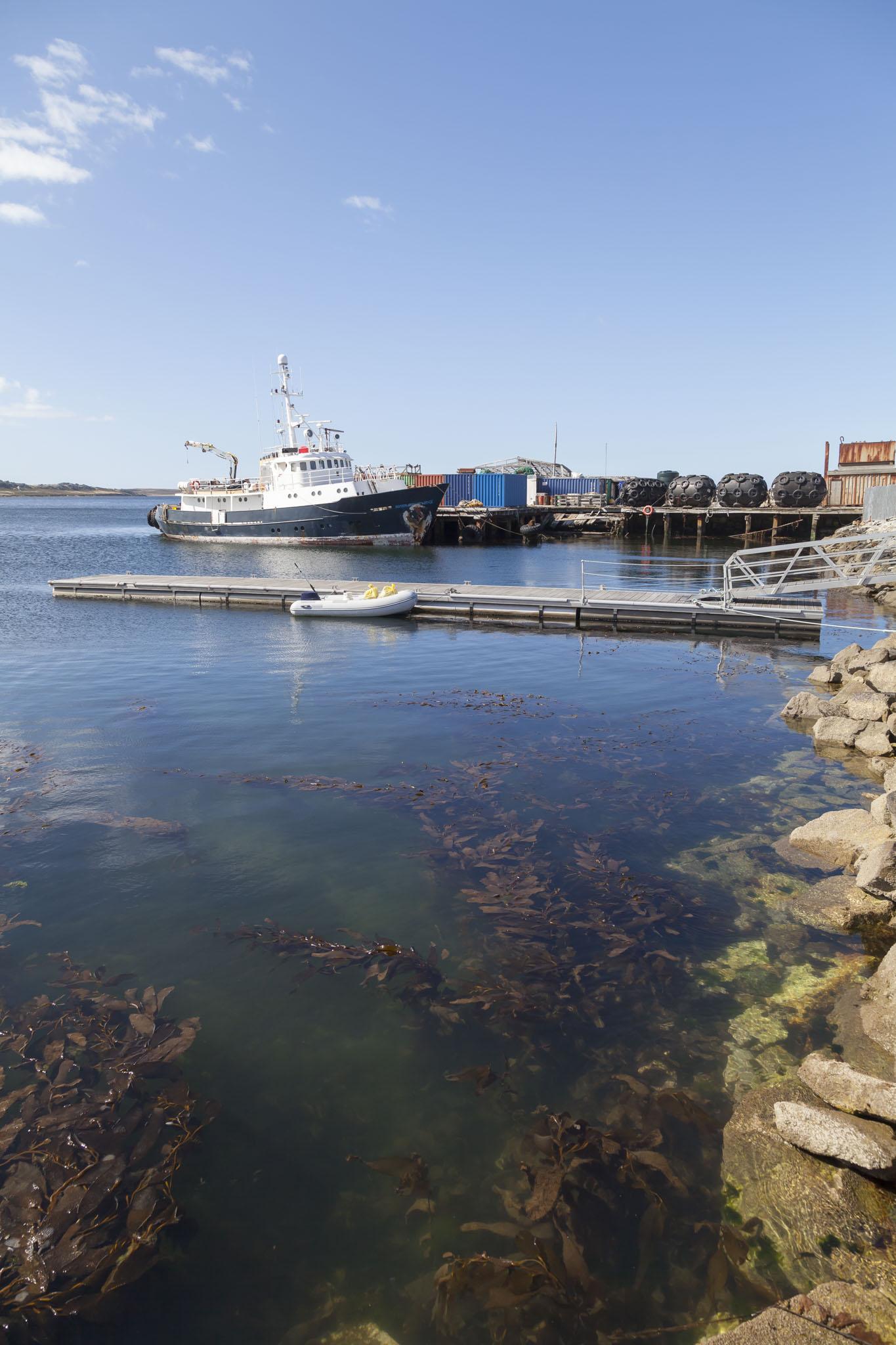 Stanley Harbour, Falklands