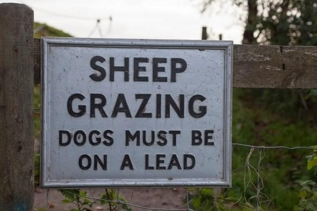 Avebury, Sheep Grazing Sign