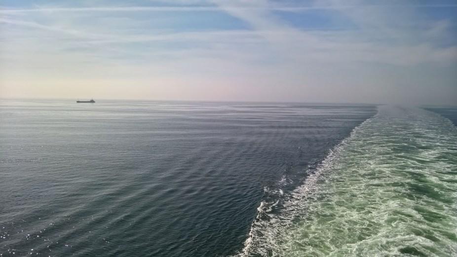 Wake View