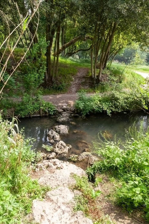 Le Parc Charruyer