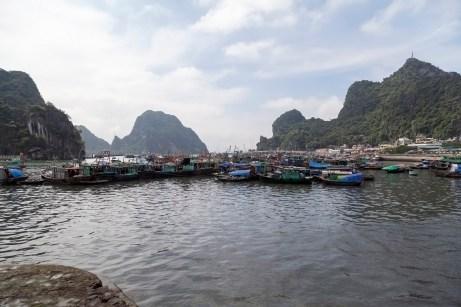 Boats, Ha Long Bay Harbour