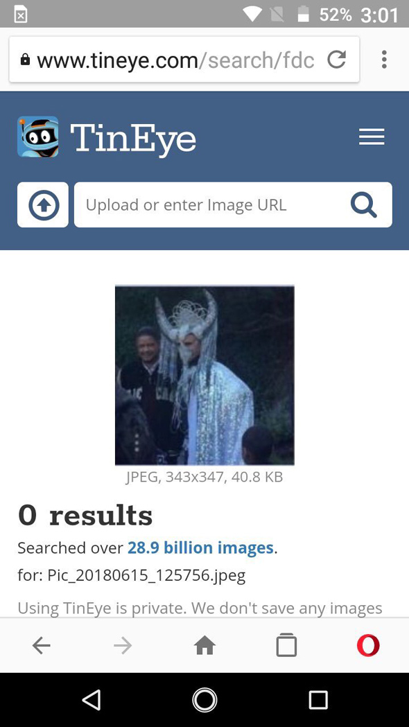 the image show zero results for a reverse image search