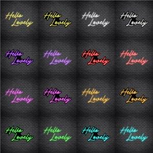 Hello Lovely V1 Neon Sign