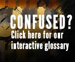 nteractive Glossary by Olga Khazan