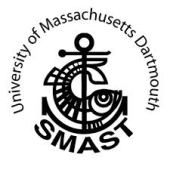 smast logo