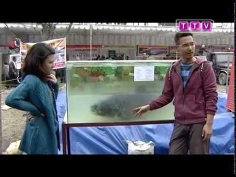 Khazzamandu Episode 19 – Fish Festival Special