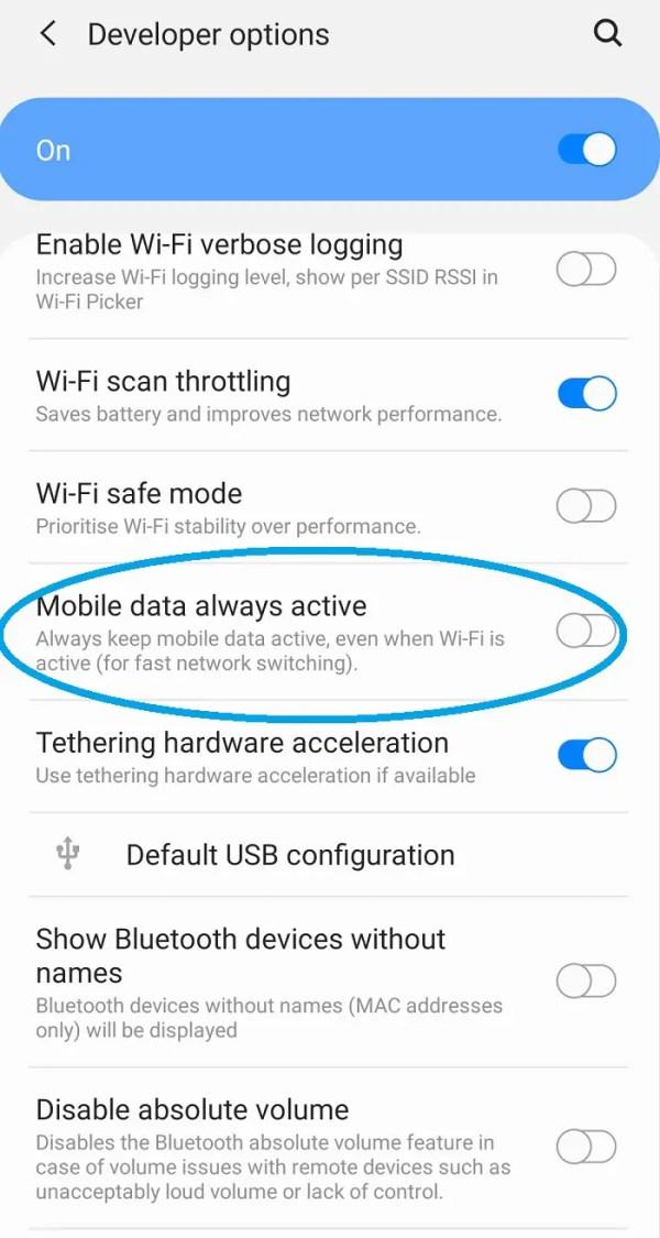 Mobile data always active developer options