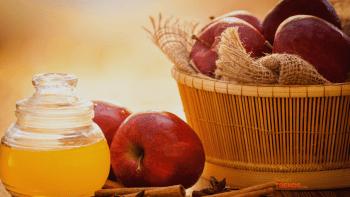 Apple cider vinegar - fermented apple juice