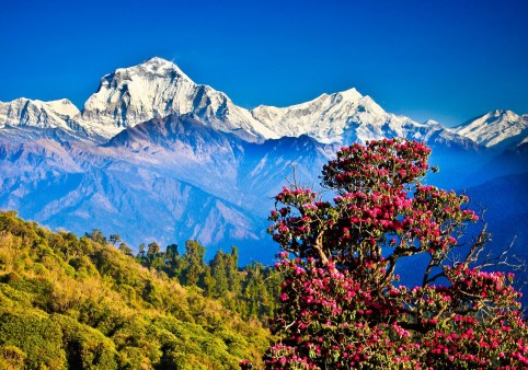 Visit Nepal, A Life Changing Opportunity with Nepal Youth Foundation