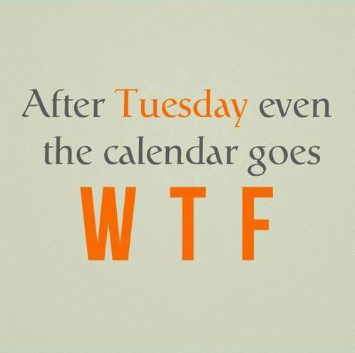 WTF-after-tuesday