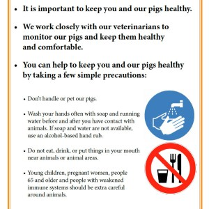 Fair Poster: Tips for Keeping You and Your Pigs Healthy
