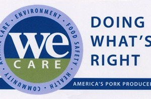 "We Care 3.5"" X 2"" Magnet"