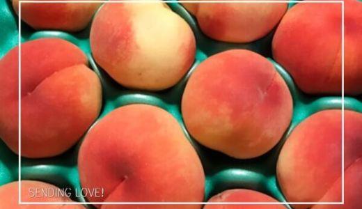山梨にある金丸文化農園から美味しい桃が届きました。【旬の味覚】