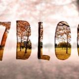 秋の道「#7blogs」
