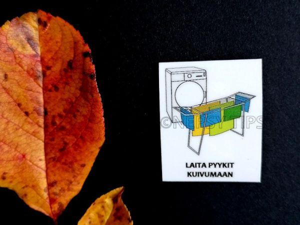 Nepsy Tips lapsen toiminnanohjauksen tukemiseen suunniteltu magneettinen kuvatukikortti Laita pyykit kuivamaan.