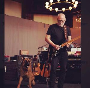 David Gilmour Tour Rehearsals