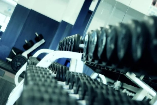 use free weights and to do circuit training