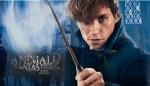 Animali Fantastici 2: I Crimini di Grindelwald - Il trailer ufficiale