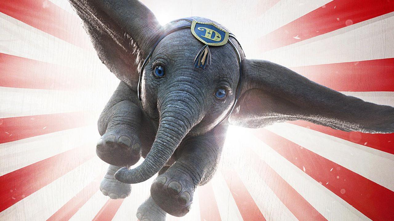 Dumbo l elefantino della disney torna a volare il sole ore