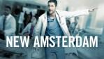 New Amsterdam: rinnovata con una seconda stagione