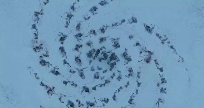 La spirale formata con i resti dei cavalli dei Guardiani della Notte