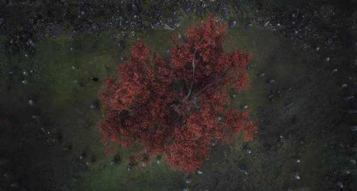 La spirale con al centro l'albero, vista nella sesta stagione nella visione di Bran